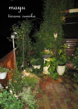 初夏の花壇♪_a0243064_2172161.jpg