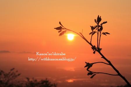 素敵な1日の終わりに@鳥取県大山にて_d0148187_1905656.jpg