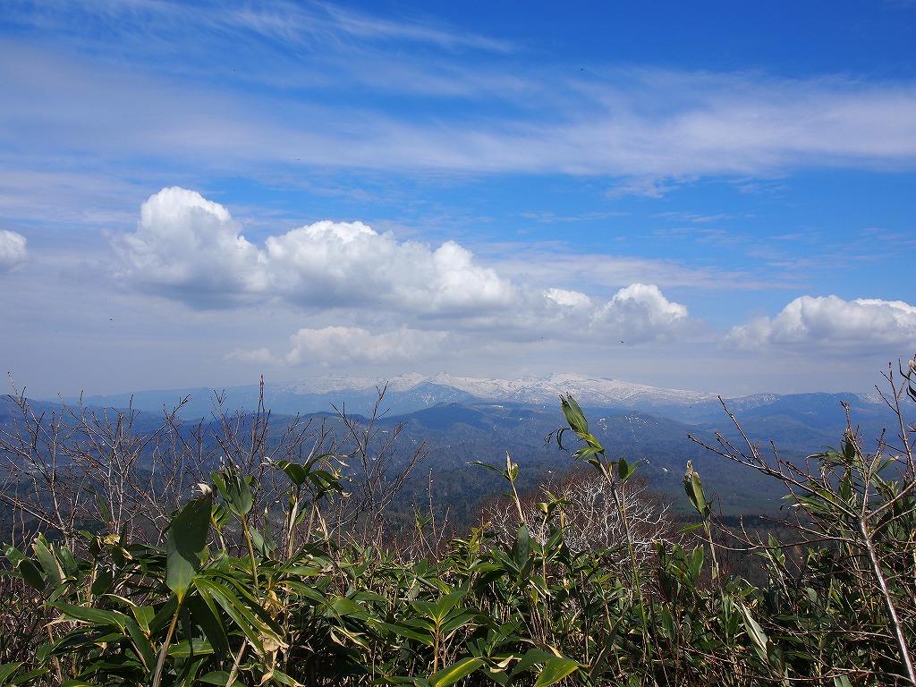 5月18日、神居尻山-その2-_f0138096_0114185.jpg