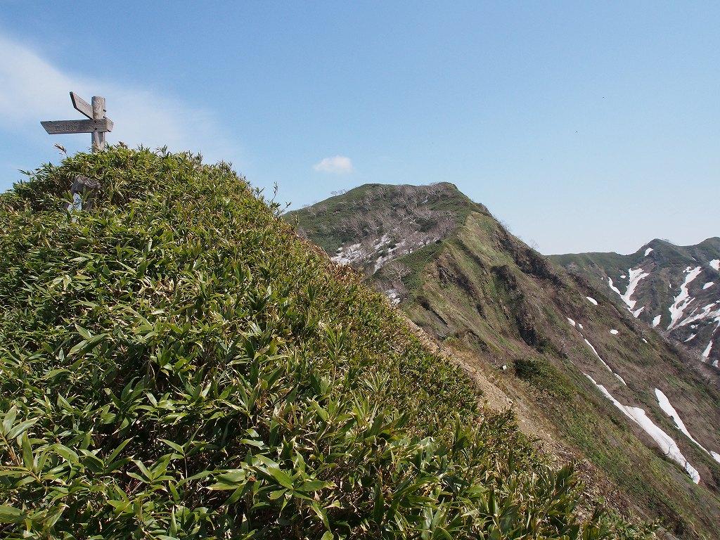 5月18日、神居尻山-その2-_f0138096_0123959.jpg