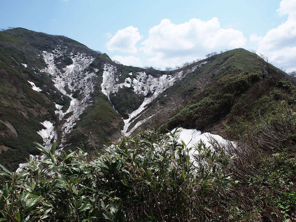 5月18日、神居尻山-その2-_f0138096_012687.jpg