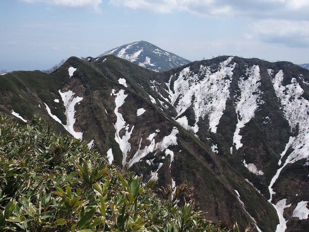 5月18日、神居尻山-その2-_f0138096_01339.jpg