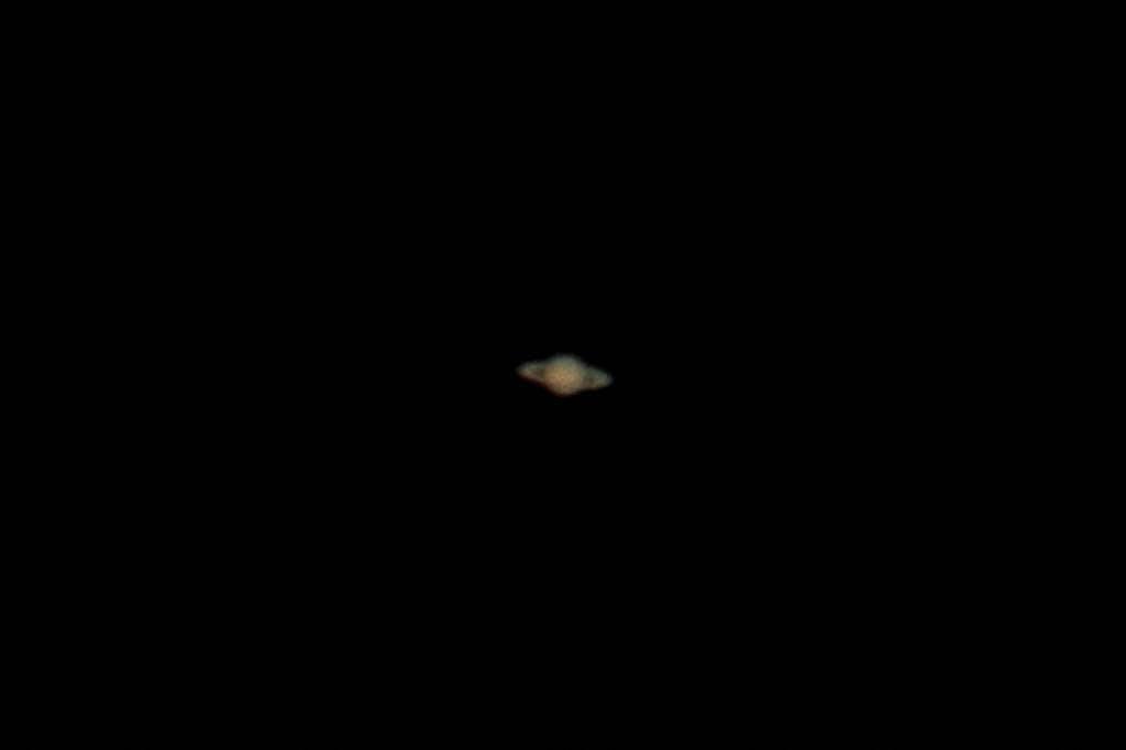 蓮池のカワセミ/デジスコで土星を/ジャガイモの花_b0024798_17472221.jpg
