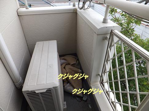 f0179203_1714147.jpg