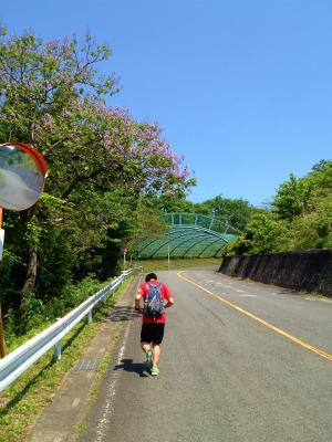 奥武蔵ウルトラ新コース_a0036808_15524413.jpg