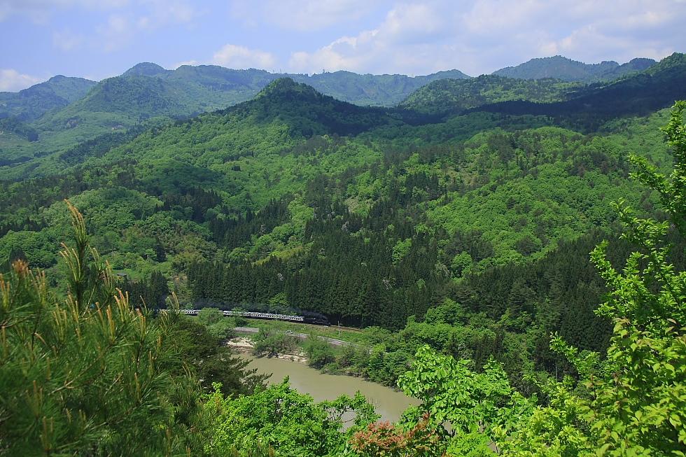 新緑 - 2012年・磐越西線 - _b0190710_237385.jpg