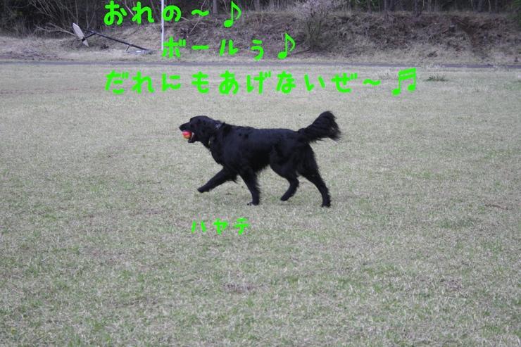 c0237824_23531761.jpg