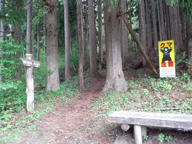『仙谷コース』 様子見に行って来ました。_f0101226_21214436.jpg