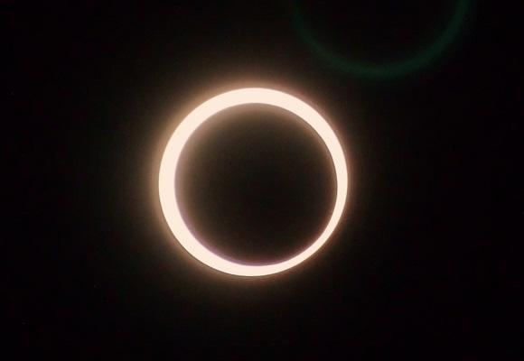 特報 金環日食・カタバミ3種_f0214527_948385.jpg