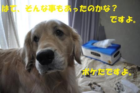 f0176830_21144192.jpg
