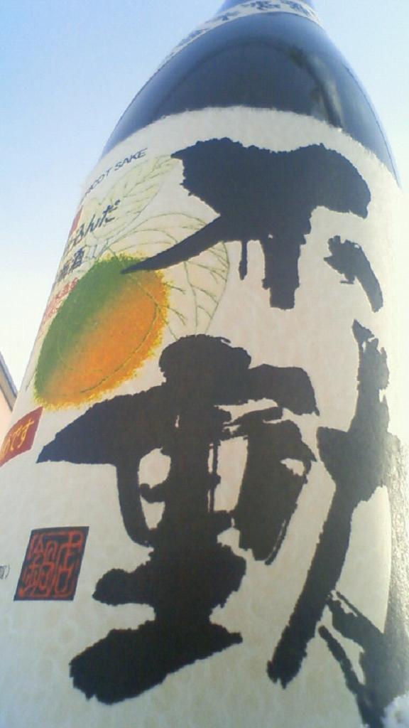 【日本酒】 不動 吊るししぼり 純米吟醸 無濾過生原酒 23BY_e0173738_1115388.jpg