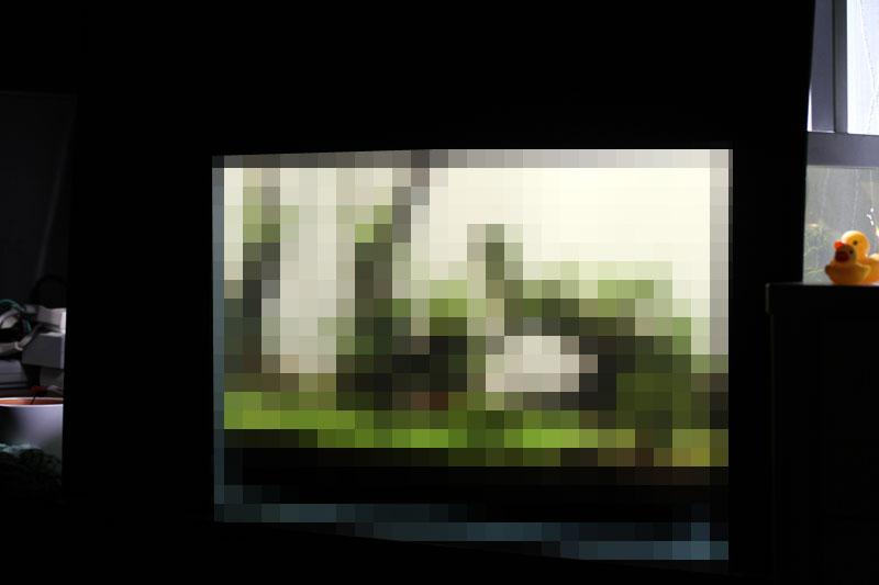 b0216341_12504420.jpg