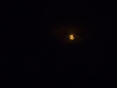 金環日食!!_f0229750_9584226.jpg