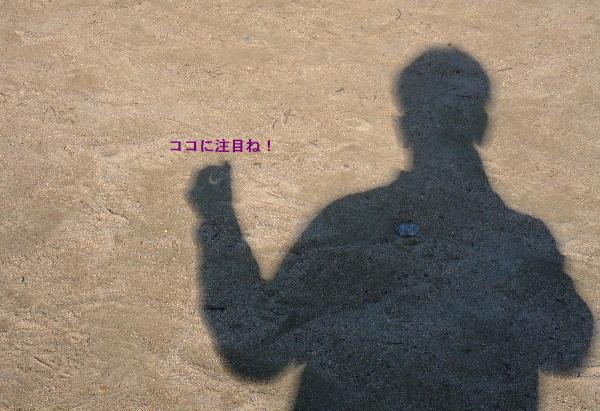 d0238057_1333512.jpg