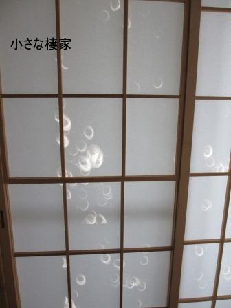 """茶臼山""""天空の花回廊""""芝桜を見て来ました♪_a0243064_15421637.jpg"""