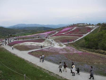 """茶臼山""""天空の花回廊""""芝桜を見て来ました♪_a0243064_1553264.jpg"""