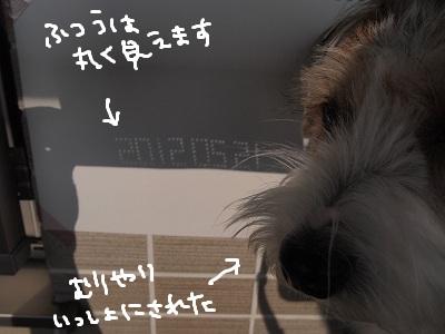b0092580_917076.jpg