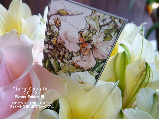 Flower Fairies展_a0225587_941295.jpg