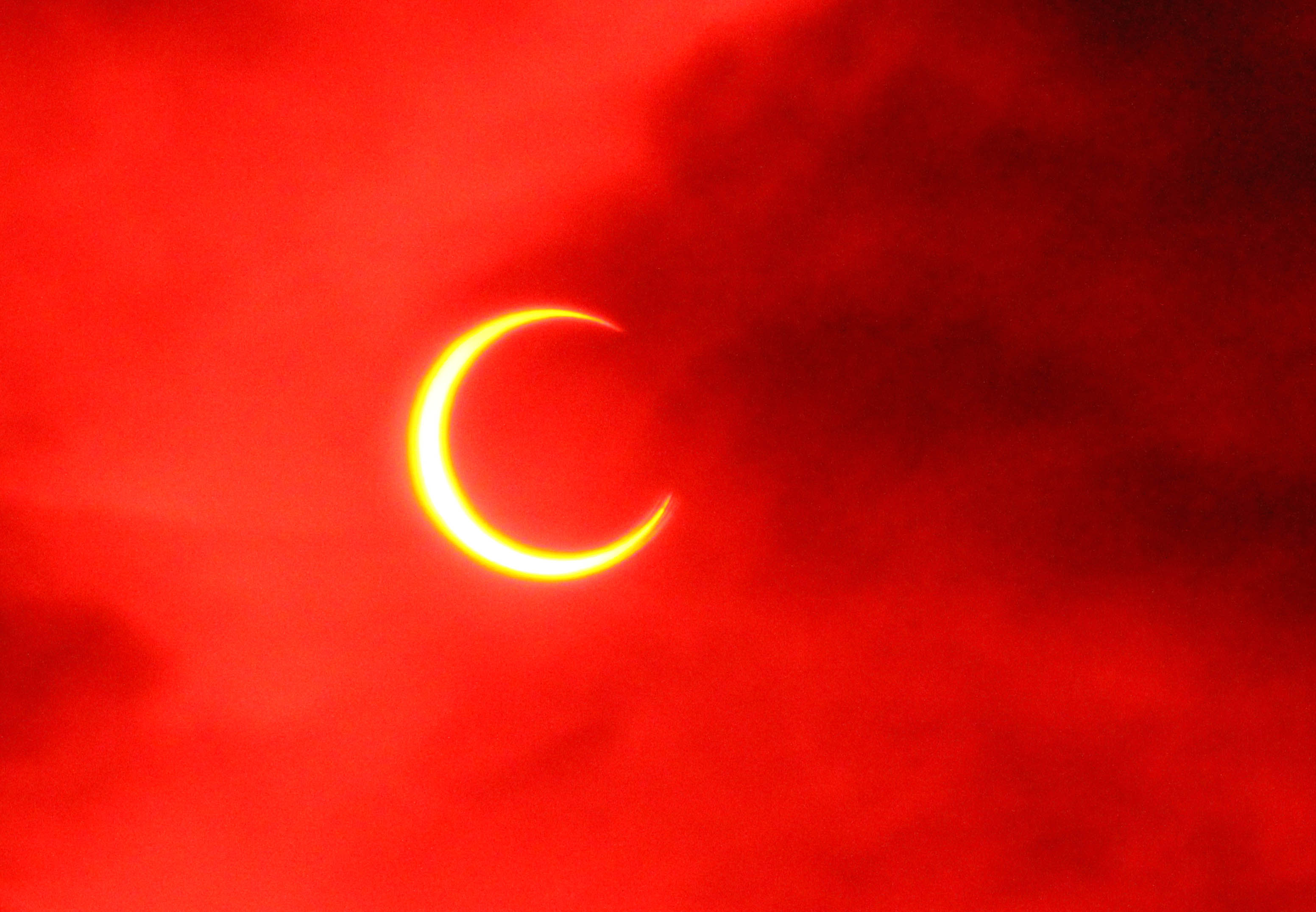 金環日食とフクロウ_e0254493_22534116.jpg