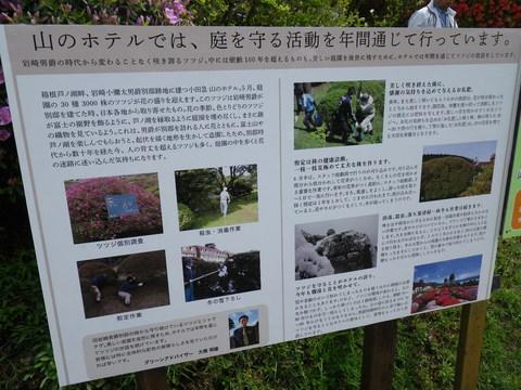 小田急 山のホテル_b0172896_172101.jpg