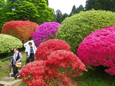 小田急 山のホテル_b0172896_17293837.jpg