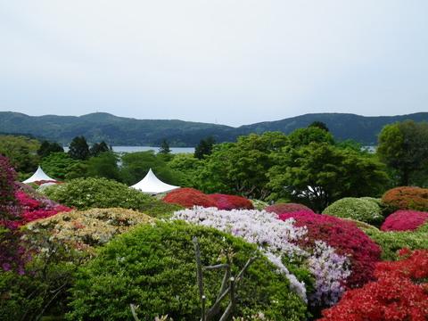 小田急 山のホテル_b0172896_1729512.jpg
