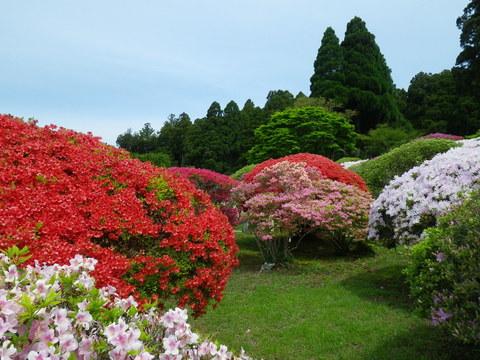 小田急 山のホテル_b0172896_1729994.jpg