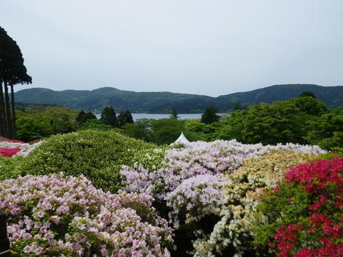 小田急 山のホテル_b0172896_17302186.jpg