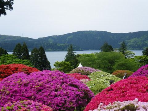 小田急 山のホテル_b0172896_1737334.jpg