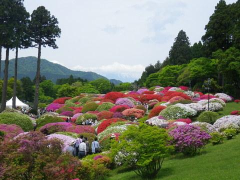 小田急 山のホテル_b0172896_17424115.jpg