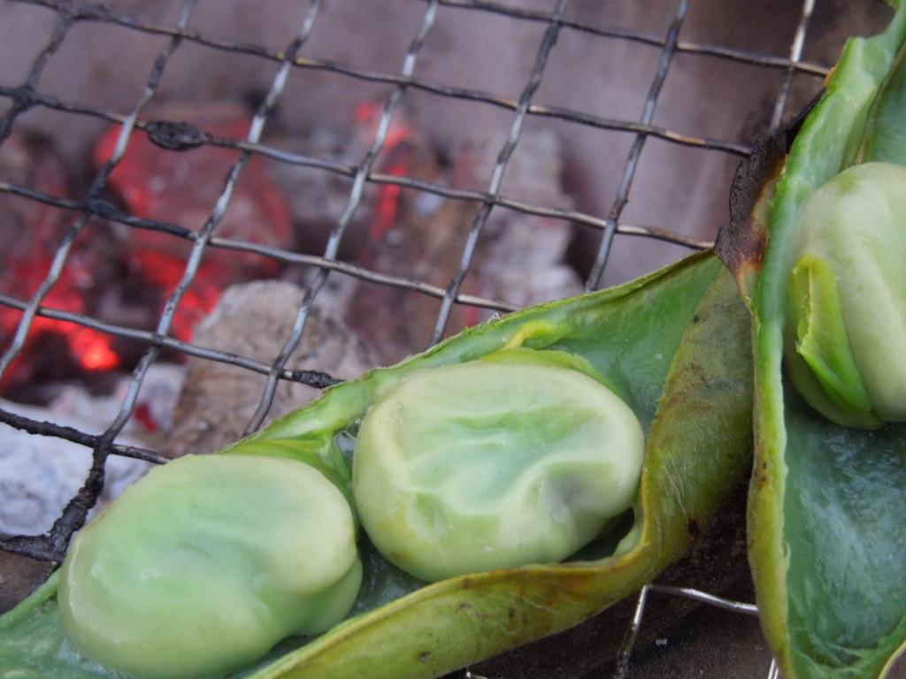 「空豆 収穫-2012」_a0120513_22261456.jpg