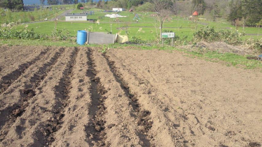 「手ぶら体験農園」参加者募集中!_e0270550_1614378.jpg
