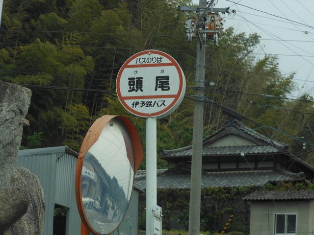 ずお_c0001670_22575524.jpg