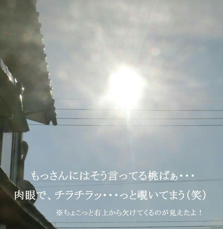 d0216270_10413514.jpg