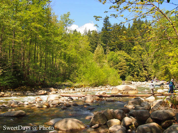Lynn Valley in North Vancouver_e0046675_10502662.jpg
