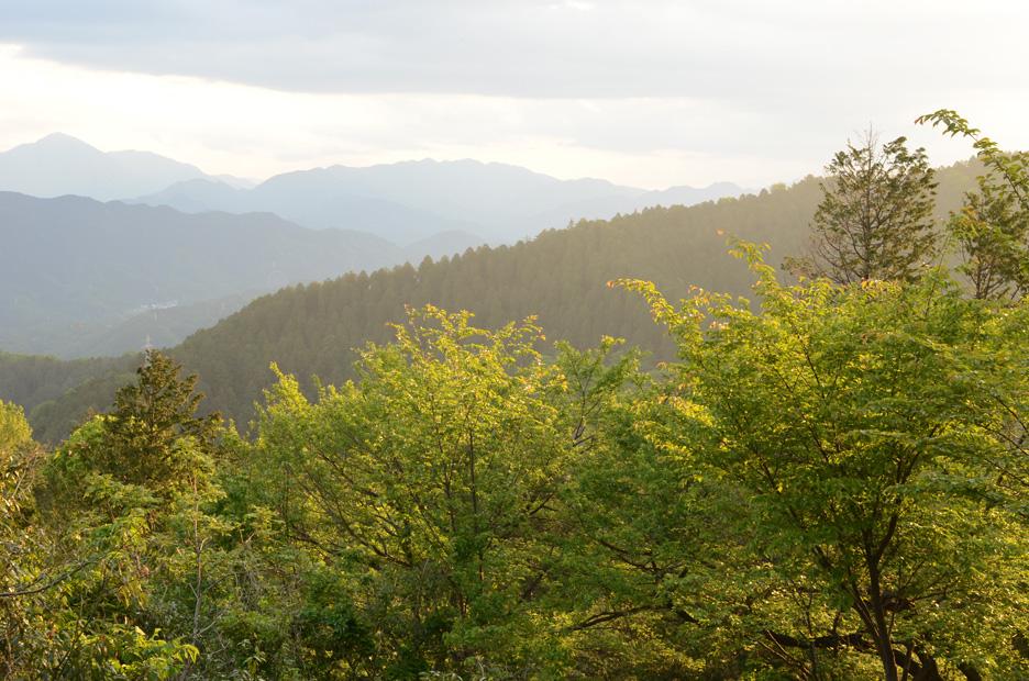 山を登る_b0194880_2052717.jpg
