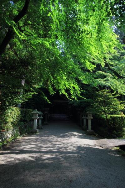 大田神社_e0051888_200681.jpg