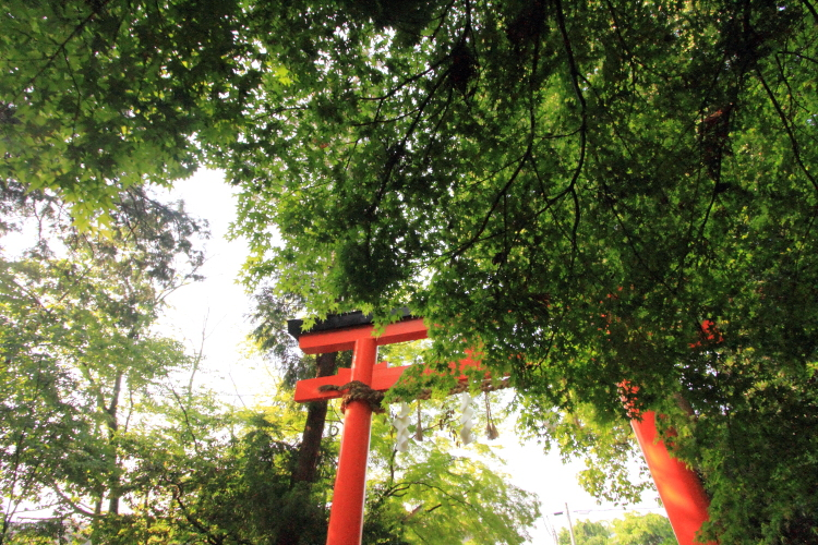 大田神社_e0051888_2011480.jpg