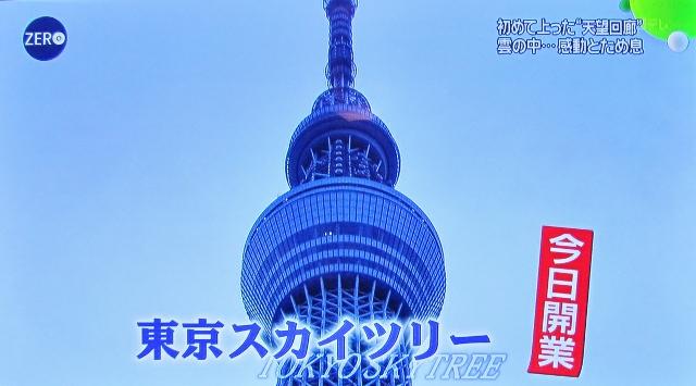 東京スカイツリー開業_b0083801_2405234.jpg