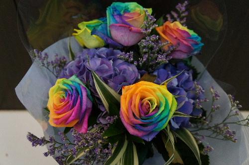 Rainbow rose_d0008402_1641336.jpg