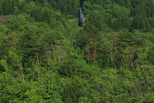新緑がふわふわもこもこ - 2012年・磐越西線 -_b0190710_23555014.jpg