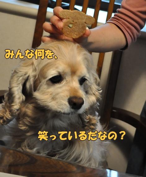 b0067012_1121966.jpg