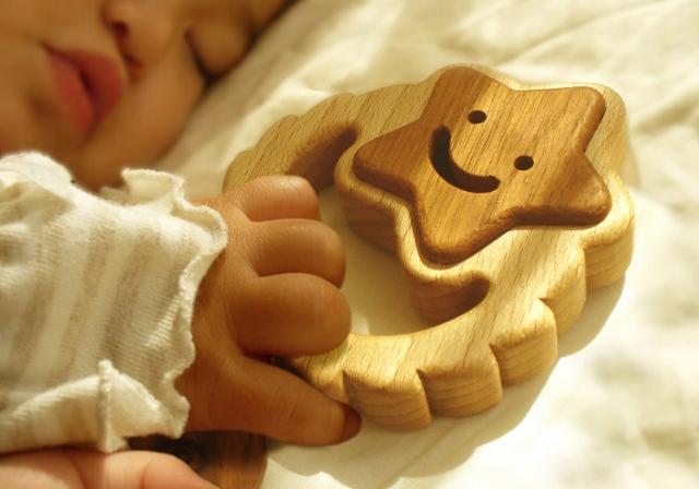 2012/7/4-9  遊ぶ木展  【木のおもちゃ】_e0091712_1385615.jpg
