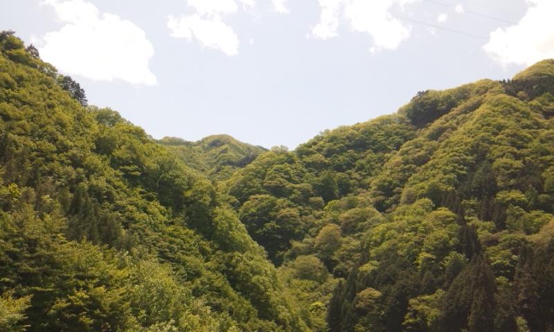 上野村 ふたたび。_b0019333_23183246.jpg