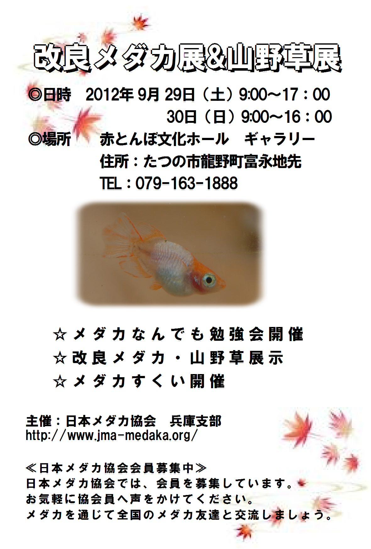 d0107166_10374562.jpg