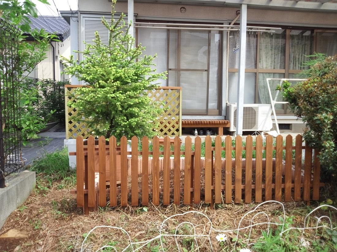新しく花壇を作りました_c0197684_23495735.jpg