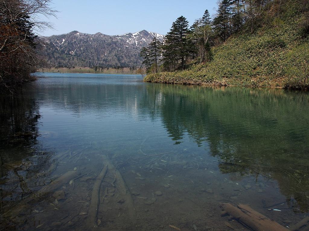 5月22日、オコタンペ湖_f0138096_2336610.jpg