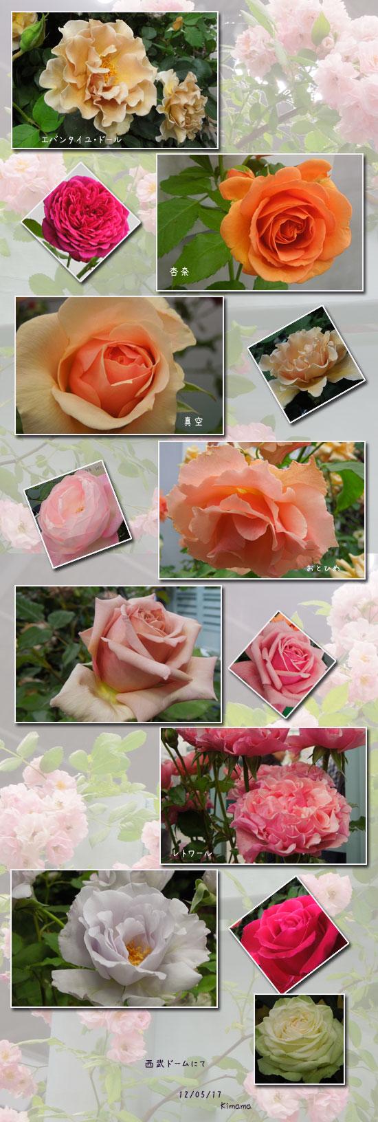 国際バラとガーデニングショー_c0051105_22472589.jpg