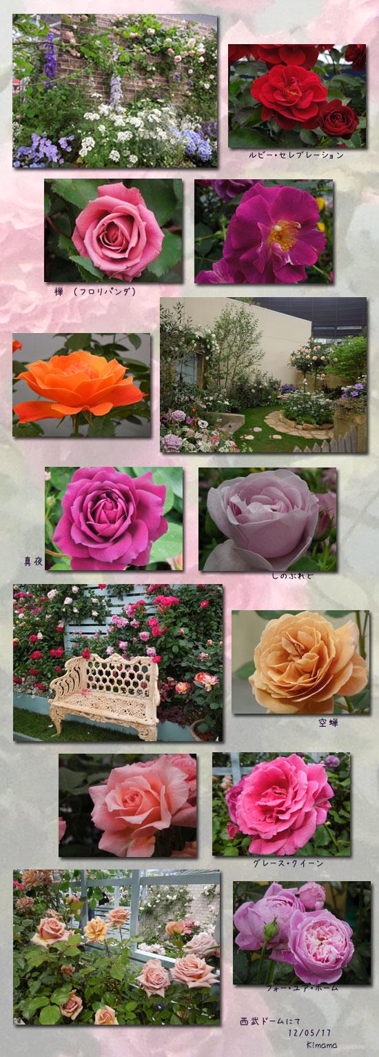 国際バラとガーデニングショー_c0051105_22475042.jpg
