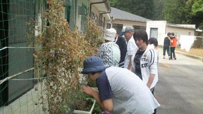 プチ収穫祭!_a0154110_1412512.jpg